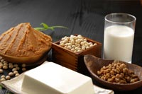 What is high protein diet plan
