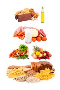 High protein diet plan for vegetarians