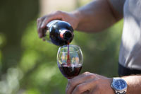 Glass of Wine a Day Helps Prevent Diabetes