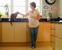 Parasite Tied to Cats a Health Risk for Humans