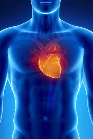 What are the symptoms of Heart Murmur