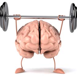 Exercise may Protect Brain from Alcohol Damage