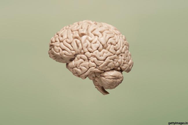 छोटा दिमाग बड़ी खुराक