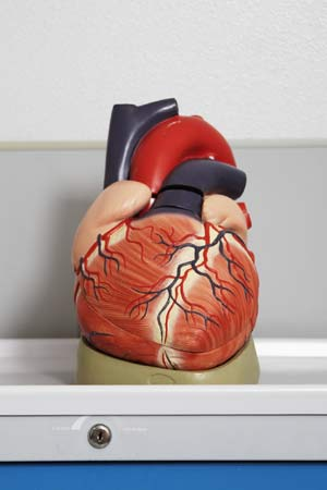 artificial heart in france