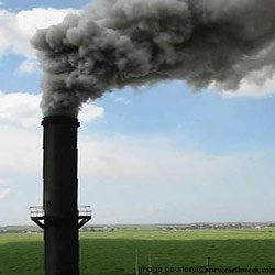 Air pollution 5th largest killer in India US study