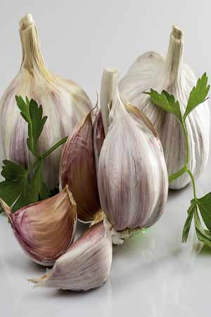 garlic is beneficial