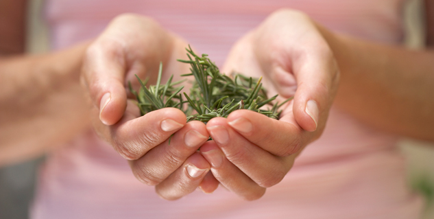 herbs for gout in hindi