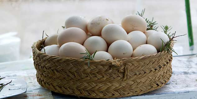 How Many Eggs in Hindi