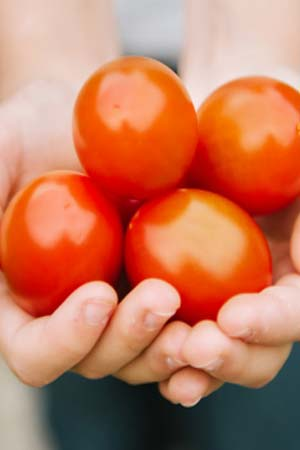 tomato benefits in hindi