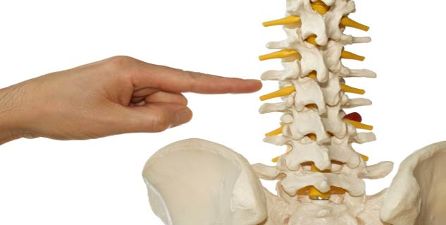 Know About Osteopathy in Hindi