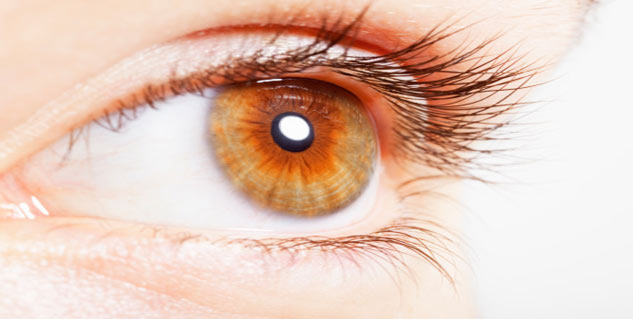 What Does The Research On Macular Pucker Say Other Diseases