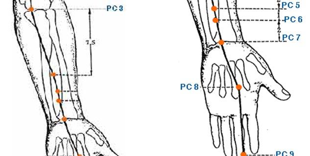 Image result for छोटी उंगली का किडनी और सिर