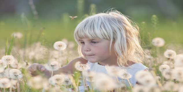 Prevent your child from Summer Insects