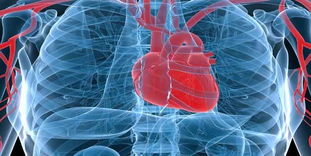 Link Between Cancer and Heart Disease