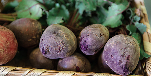 Delicious Recipes of Beets in Hindi