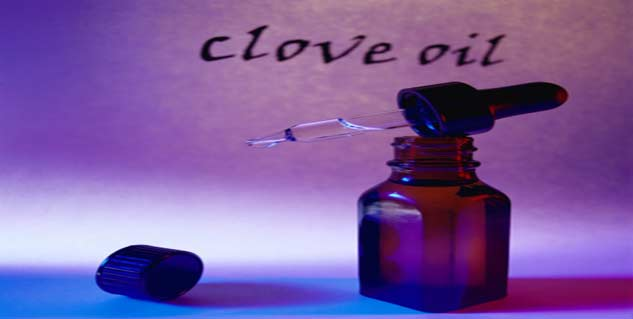 clove oil in hindi