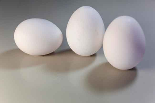 white egg in hindi