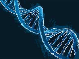 खोजे गए कैंसर और ऑटिज्म के 43 समान जीन