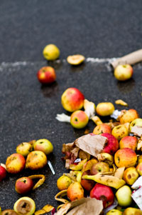 Waste fruits