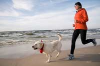 Why to exercise with your dog
