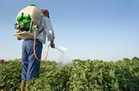 Reduce your Exposure to Pesticides
